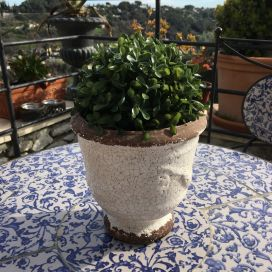 "Terra cotta plant holder ""Anduze"" White"