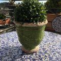 "Terra cotta plant holder ""Anduze"" green"