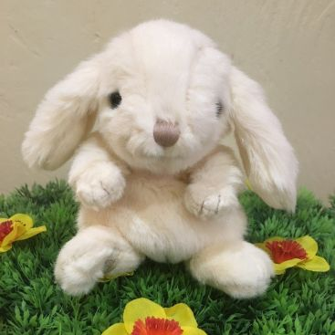 Peluches Bukowski - Lapin Kanini Blanc