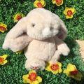Peluches Bukowski - Bouncy Bunny girl crème