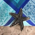 Silvery metal tablecloth pliers  Starfish  SUD ETOFFE