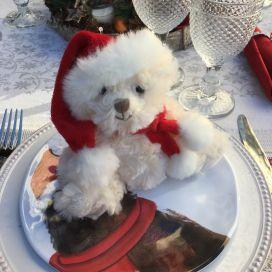 Barbara Bukowski  White Teddy bear Baby Tomtenisse