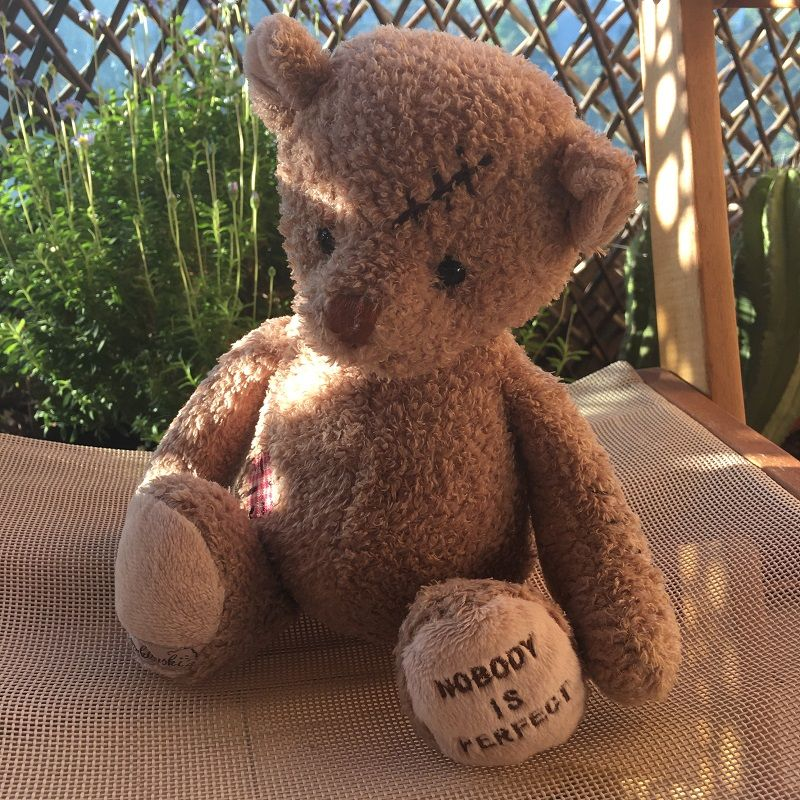 Barbara Bukowski - Teddy bear Nobody's Perfect
