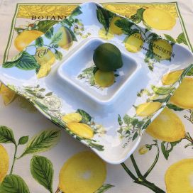 "Michel Design Works - ""LEMON BASIL"" Melanine serveware Cihp and dip"