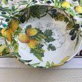 "Michel Design Works - ""CAMPAGNA"" Melamine Bistro Bowl"